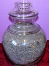 A Jar full Of Holland Blue Seeds!